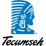 Tecumseh ( daw. L'unite Hermetique)